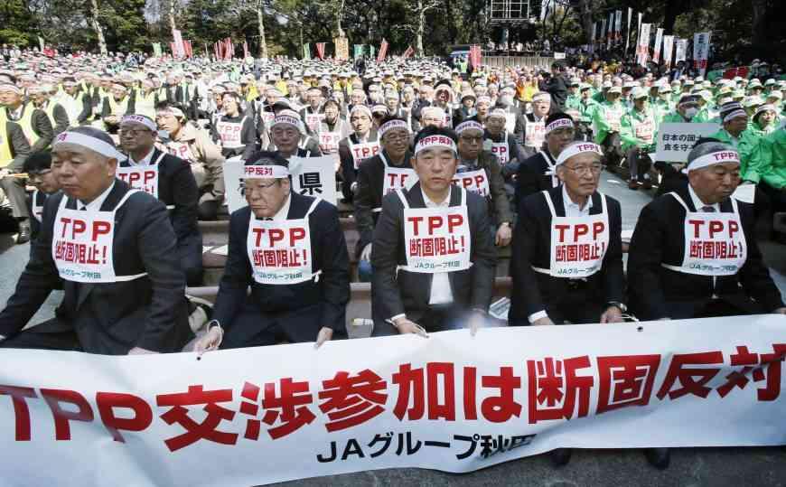 Japan Focus Writer Calls TPP