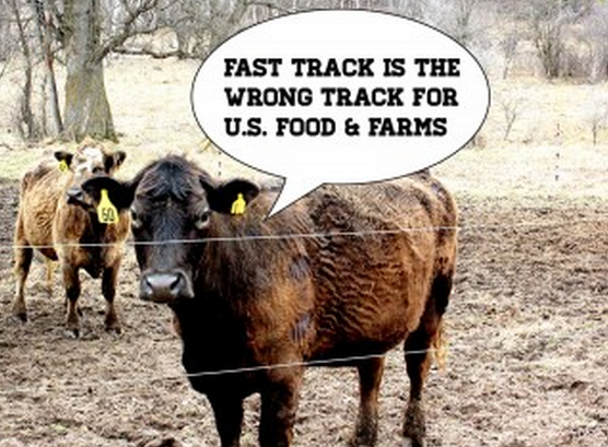 Fast Track A Bad Deal For Farmers & Our Food System, 110+ Groups Say