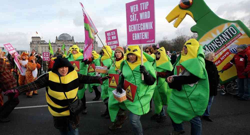 Agricultural Issues Slow TTIP Progress