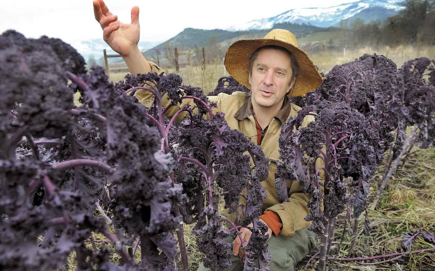 The Trans-Pacific Partnership Will Hurt Farmers and Make Seed Companies Richer