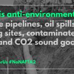 NAFTA TS Environment